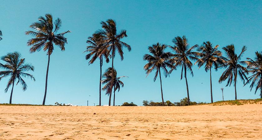 Caribbean Cost Efficient Porting
